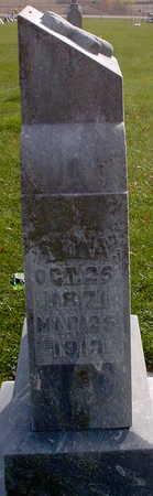 DETTMER, ANNA - Chickasaw County, Iowa | ANNA DETTMER