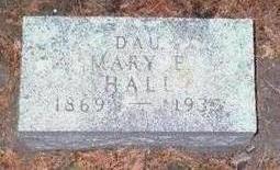 HALL, MARY E. - Chickasaw County, Iowa | MARY E. HALL