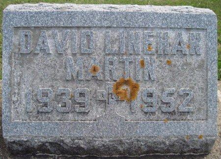 MARTIN, DAVID LINEHAN - Chickasaw County, Iowa   DAVID LINEHAN MARTIN