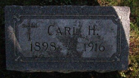 SMITH, CARL H. - Chickasaw County, Iowa | CARL H. SMITH