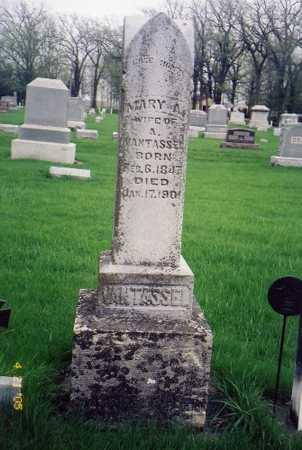 VAN TASSEL, MARY A. - Chickasaw County, Iowa | MARY A. VAN TASSEL