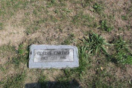 CARRIER, GOLDIE - Clarke County, Iowa | GOLDIE CARRIER