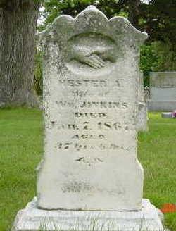 JINKINS, HESTER - Clarke County, Iowa | HESTER JINKINS