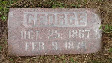 LARKINS, GEORGE - Clarke County, Iowa | GEORGE LARKINS