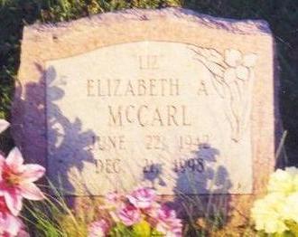 MCCARL, ELIZABETH ANN - Clarke County, Iowa   ELIZABETH ANN MCCARL