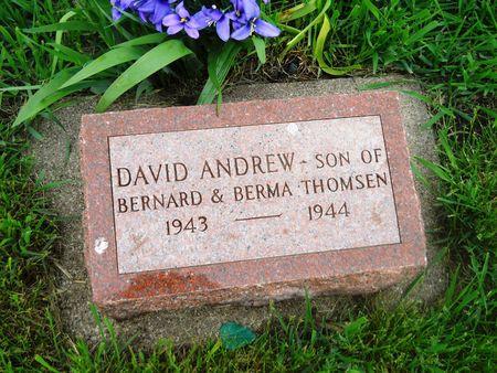 THOMSEN, DAVID ANDREW - Clay County, Iowa   DAVID ANDREW THOMSEN