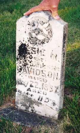 DAVIDSON, ELSIE M. - Clay County, Iowa   ELSIE M. DAVIDSON