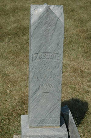 MORI, FREDDIE - Clay County, Iowa | FREDDIE MORI