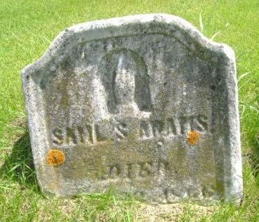ADAMS, SAMUEL S. - Clayton County, Iowa   SAMUEL S. ADAMS
