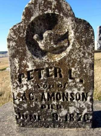 AMONSON, PETER L. - Clayton County, Iowa   PETER L. AMONSON