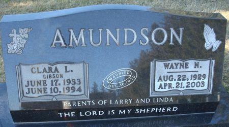 AMUNDSON, CLARA L. - Clayton County, Iowa | CLARA L. AMUNDSON