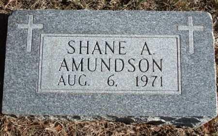 AMUNDSON, SHANE A. - Clayton County, Iowa | SHANE A. AMUNDSON