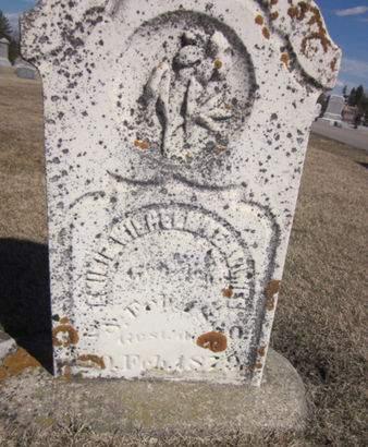 WITHEL, EMILIE WILHELMINE - Clayton County, Iowa | EMILIE WILHELMINE WITHEL
