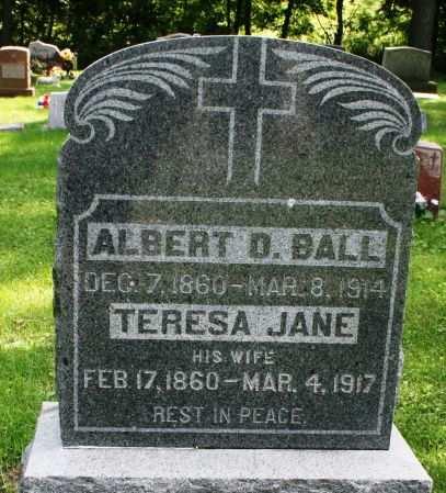 BALL, TERESA JANE - Clayton County, Iowa | TERESA JANE BALL