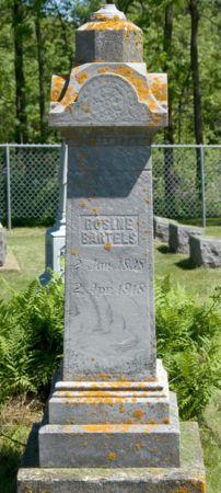 BARTELS, ROSINE - Clayton County, Iowa | ROSINE BARTELS