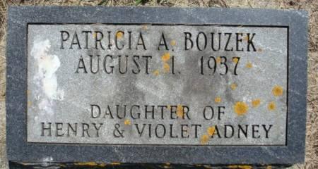 ADNEY BOUZEK, PATRICIA A. - Clayton County, Iowa | PATRICIA A. ADNEY BOUZEK