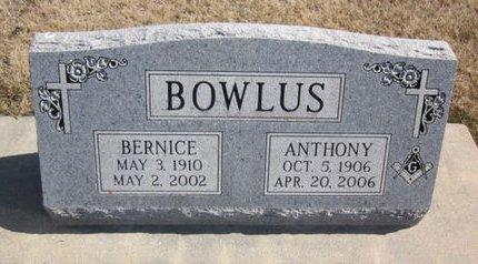 BOWLUS, BERNICE - Clayton County, Iowa | BERNICE BOWLUS