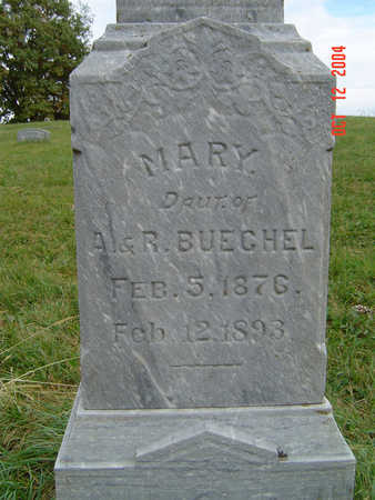 BUECHEL, MARY - Clayton County, Iowa   MARY BUECHEL