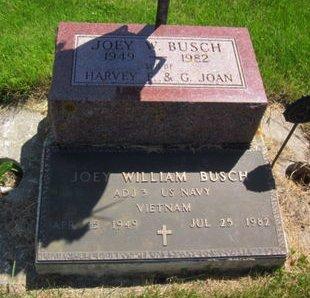 BUSCH, JOEY WILLIAM - Clayton County, Iowa   JOEY WILLIAM BUSCH