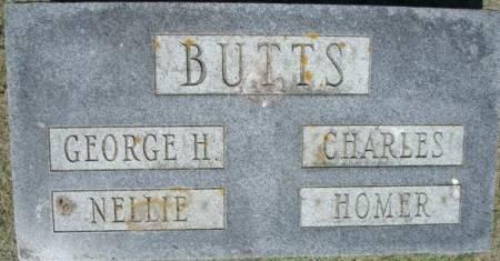 BUTTS, HOMER - Clayton County, Iowa | HOMER BUTTS