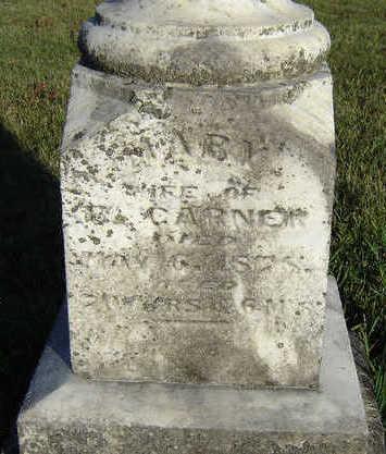 CARNER, MARY - Clayton County, Iowa | MARY CARNER