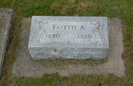 COOK, FAYETTE A. - Clayton County, Iowa   FAYETTE A. COOK