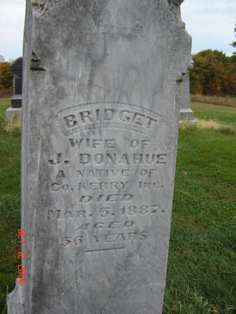 DONAHUE, BRIDGET - Clayton County, Iowa   BRIDGET DONAHUE