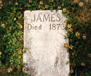 DRISCOLL, JAMES - Clayton County, Iowa | JAMES DRISCOLL