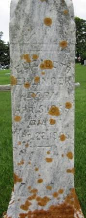 ELLINGER, ELIZABETH - Clayton County, Iowa   ELIZABETH ELLINGER