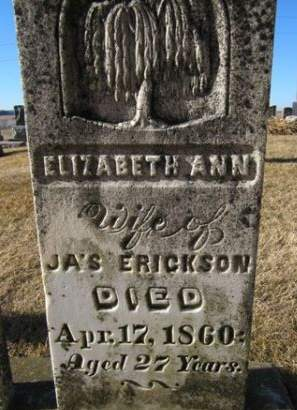 ERICKSON, ELIZABETH ANN - Clayton County, Iowa | ELIZABETH ANN ERICKSON