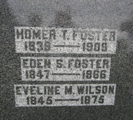 FOSTER, EDEN S. - Clayton County, Iowa | EDEN S. FOSTER