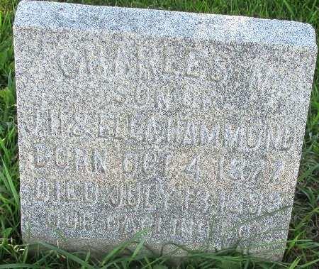 HAMMOND, CHARLES N. - Clayton County, Iowa | CHARLES N. HAMMOND