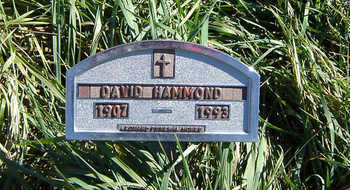 HAMMOND, DAVID - Clayton County, Iowa | DAVID HAMMOND