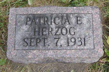 HERZOG, PATRICIA E. - Clayton County, Iowa | PATRICIA E. HERZOG