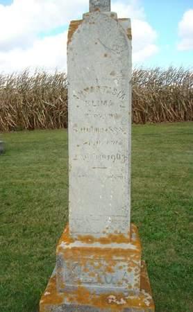 KLIMA, ANNASTASIA - Clayton County, Iowa | ANNASTASIA KLIMA
