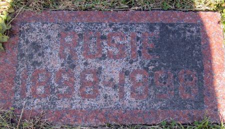 LESTINA, ROSIE - Clayton County, Iowa | ROSIE LESTINA