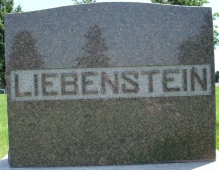 LIEBENSTEIN, FAMILY STONE - Clayton County, Iowa | FAMILY STONE LIEBENSTEIN
