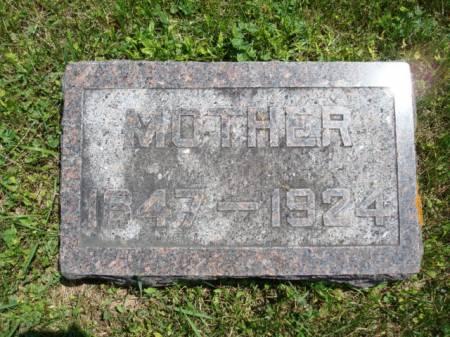 LIEBENSTEIN, WILHILMINE 'MINNIE' - Clayton County, Iowa | WILHILMINE 'MINNIE' LIEBENSTEIN
