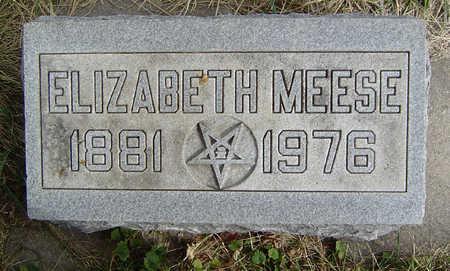 MEESE, ELIZABETH - Clayton County, Iowa | ELIZABETH MEESE