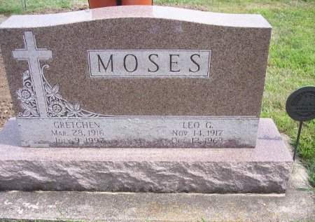 MOSES, LEO G. - Clayton County, Iowa | LEO G. MOSES