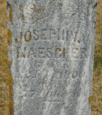 NAESCHER, JOSEPHINE - Clayton County, Iowa | JOSEPHINE NAESCHER