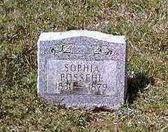 POSSEHL POSSEHL, SOPHIA - Clayton County, Iowa | SOPHIA POSSEHL POSSEHL