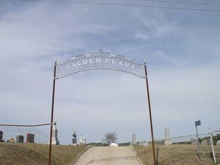 SACRED HEART - VOLGA CITY, CEMETERY - Clayton County, Iowa | CEMETERY SACRED HEART - VOLGA CITY