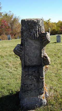 SMOCK, JOHN WESLEY - Clayton County, Iowa | JOHN WESLEY SMOCK