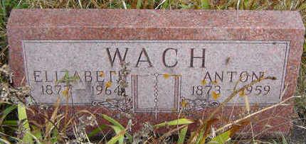 WACH, ELIZABETH - Clayton County, Iowa | ELIZABETH WACH