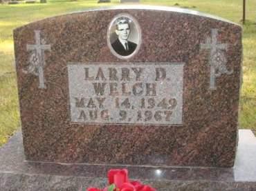 WELCH, LARRY D. - Clayton County, Iowa   LARRY D. WELCH