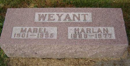 WEYANT, MABEL - Clayton County, Iowa | MABEL WEYANT