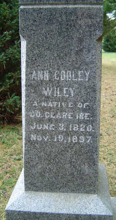 COOLEY WILEY, ANN - Clayton County, Iowa | ANN COOLEY WILEY