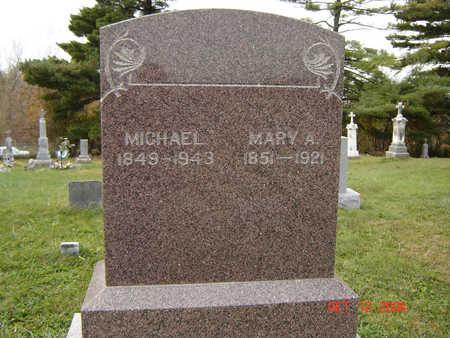 WILEY, MICHAEL - Clayton County, Iowa | MICHAEL WILEY
