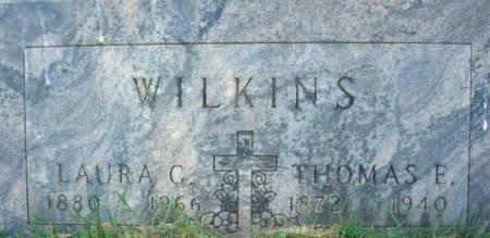 WILKINS, LAURA C. - Clayton County, Iowa   LAURA C. WILKINS